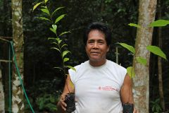 Prioritising reforestation efforts in Indonesia