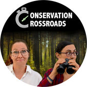 ConservationCrossroads avatar